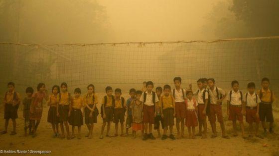 Mirko Busto: L'olio di palma non fa male? Andatelo a dire ai bambini indonesiani