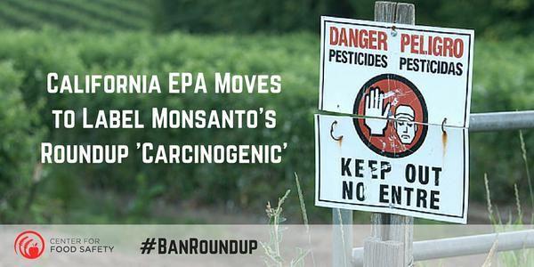 La California diventa il primo stato Usa ad etichettare il Roundup della Monsanto come cancerogeno